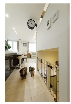 アキュラホーム スキップフロア構造で空間を有効活用 家族とペットが快適に暮らす家