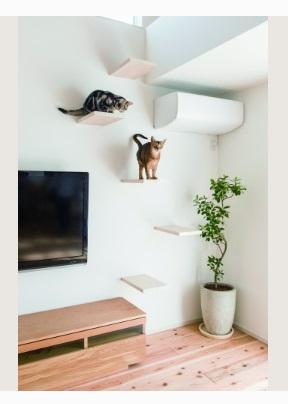 アキュラホームの実例 猫ものびのびな平屋の住まい  キャットステップ