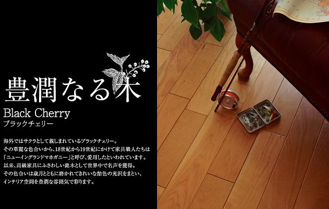 エイダイ・銘樹・ブラックチェリー